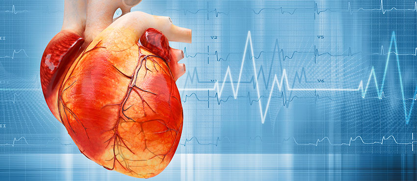 Успокоить сердце в домашних условиях 502